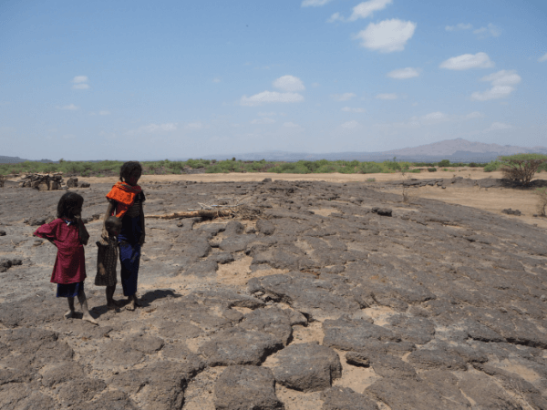 Drought prevention dams have dried up across Afar