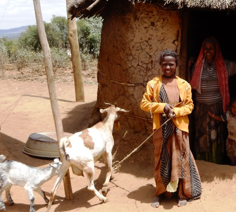 Meimouna's adopted daughter with their 2 goats in Ifa Aramaya